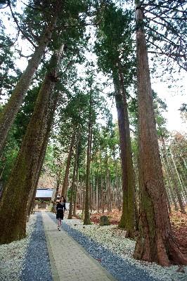 多可町青玉神社07