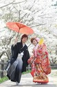 ブライダルフェア『結婚式みたいな日 Ⅲ』