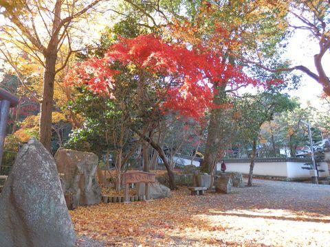 西林寺の紅葉11月25日
