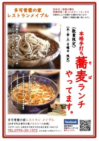 兵庫 蕎麦 多可青雲の家