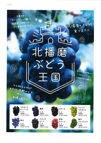 北播磨ぶどう王国ポスター
