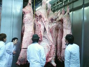 西宮食肉センターでの勉強会
