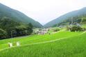 岩座神棚田05